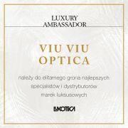 Luxory Ambassador